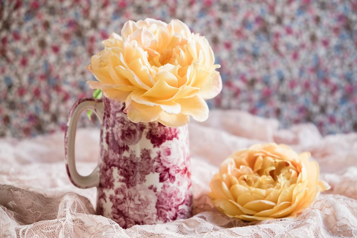 Roses_in_rose-vase-13-07-16-14