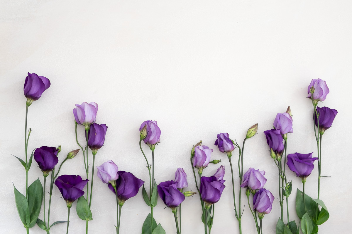 Stock-Styled-Floral-06-06-16-69