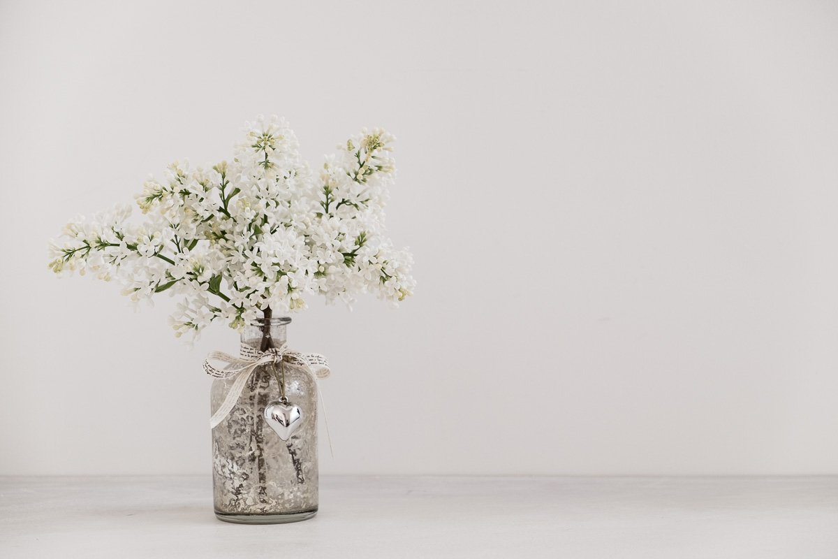 White_Lilac-19-04-17-2