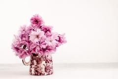 Blossom-19-04-17-3
