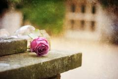 flower-workshop-65-Edit