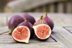 Figs-21-09-2014-22-Edit