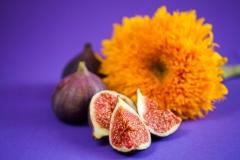 Figs-21-09-2014-295