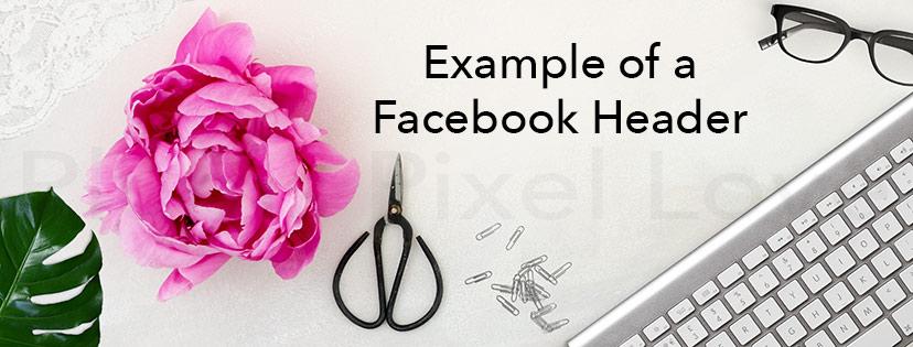 peonies-Blank-Green-leaves-facebook-header